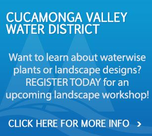 Landscape Workshops
