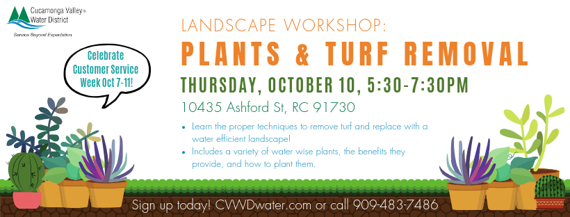 Oct 10 Workshop_ Plants and Turf Removal